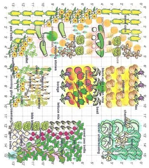 companion gardening layout 25 best ideas about companion planting on