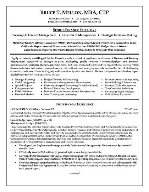 financial manager resume example