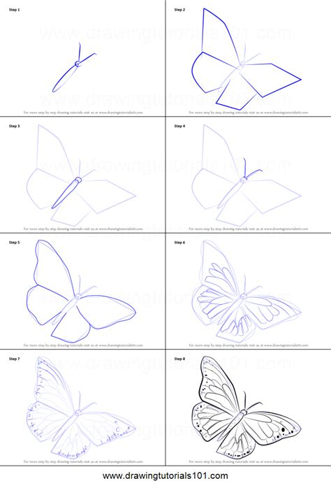 butterfly step by step how to draw a monarch butterfly printable step by step