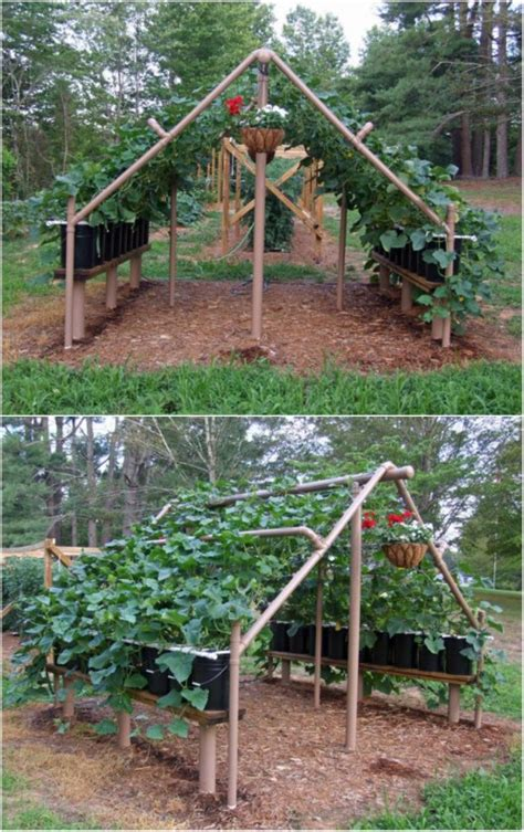 pvc garden ideas 100 expert gardening tips ideas and projects that every