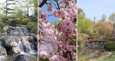 Der Garten Lokal Wien by Fern 246 Stliche Gartenkunst Mitten In Wien Vienna At