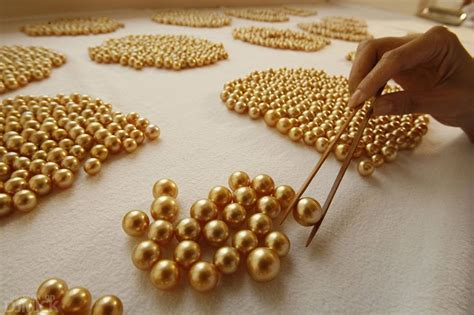 pearl wholesale south sea pearls prices and value factors info harga