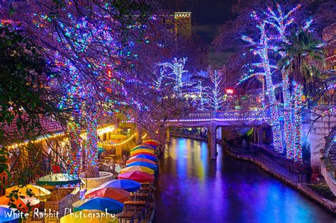 san antonio lights san antonio riverwalk lights white rabbit