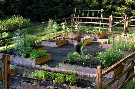 raised bed designs vegetable gardens 38 homes that turned their front lawns into beautiful