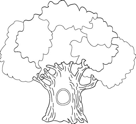 tree colouring in pages coloring pages tree az coloring pages