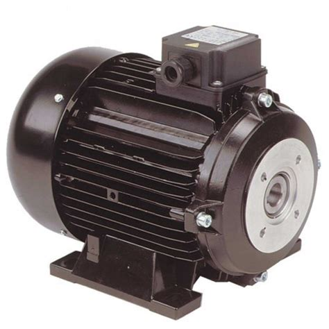 Electric Motor Manufacturer by Electric Motor Hollow Shaft Electric Motor Manufacturer