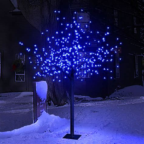 2 2m 7ft 2in outdoor garden cherry blossom tree with 600