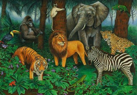 animal jungle animal jungle