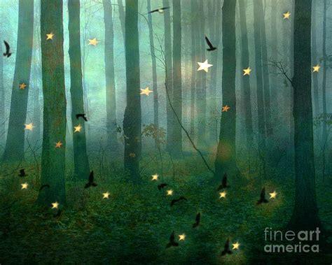 woodlands lights surreal dreamy nature lights woodlands