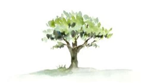 Baum Mit Roten Blättern 136 by Aquarell Anstrich Gem 252 Se Stock Illustrations 136
