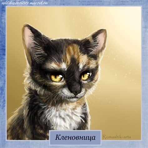 cat painting guide mapleshade warriors by romashik arts on deviantart