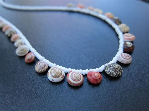 shell jewelry seashell necklace connie wong