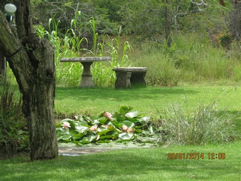 Garden Bulawayo View Of The Garden Picture Of Southern Comfort Lodge