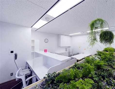 Classic Bathroom Designs remains full internal inspection of a medical clinic in