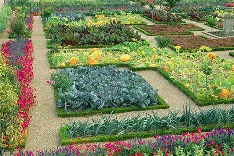 home vegetable garden tips how to grow vegetables diy home improvement tips ideas