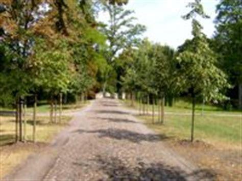 Der Garten Hauptallee by Schlossgarten