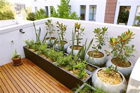 small terrace garden design ideas lawn garden images of small terrace garden ideas