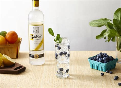 Ketel One Citroen Recipes by Vodka Drink Recipes Vodka Cocktails Ketel One Vodka