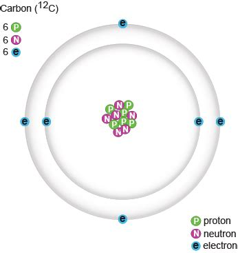 Carbon Number Of Protons by Biology Protons Neutrons And Electrons Shmoop Biology