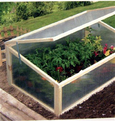 cold frame   Whispers of the Earth