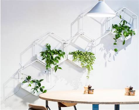 vertical wall planter wabe wall planter is vertical garden solution for