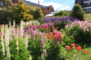 flower garden photo file flower garden in ushuaia 5543010755 jpg wikimedia