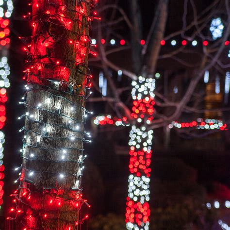 tree wrapped in lights outdoor decorating ideas yard envy