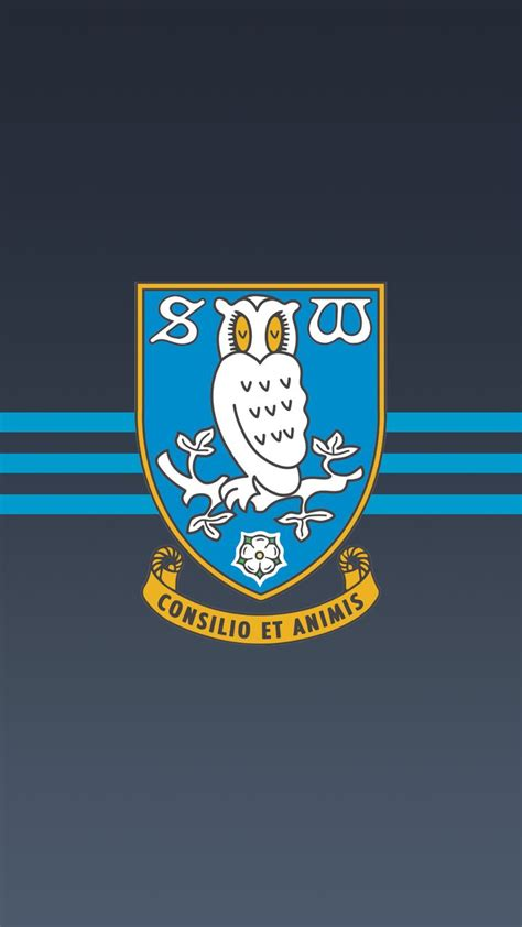 sheffield wednesday the 25 best ideas about sheffield wednesday on