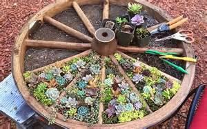 unique planters for succulents 15 unique and creative succulent planter ideas garden
