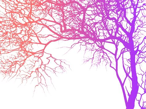 colorful tree a colorful tree silhouette by saphiresilver on deviantart