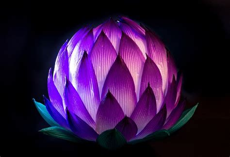 lotus flower paper craft lotus flower craft craft projects