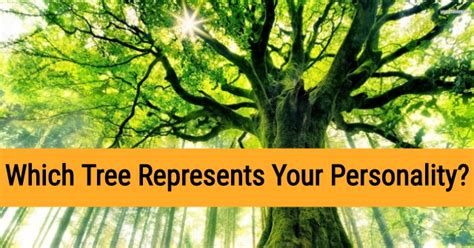 tree represents which tree represents your personality quizdoo