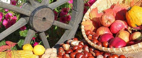 Der Garten Im Oktober by Der Garten Im Oktober Gartenarbeit
