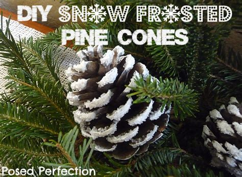 acrylic paint cones posed perfection diy snow frosted pine cones tutorial