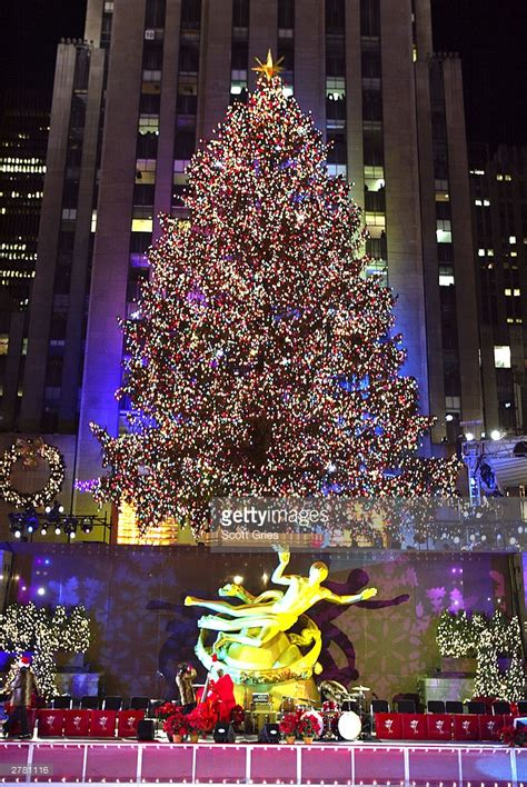 new york tree lighting 71st annual rockefeller center tree lighting