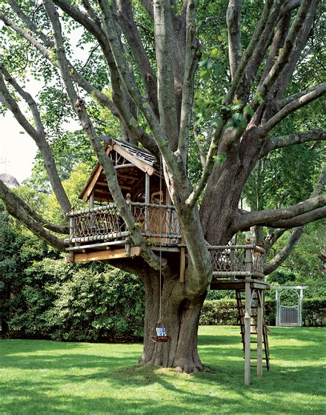 treehouse house a backyard treehouse for the child in all of us hooked