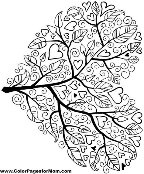 tree colouring in pages 17 best ideas about colouring pages on
