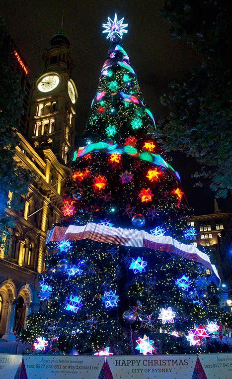 sydney tree lighting sydney tree lighting rainforest islands ferry