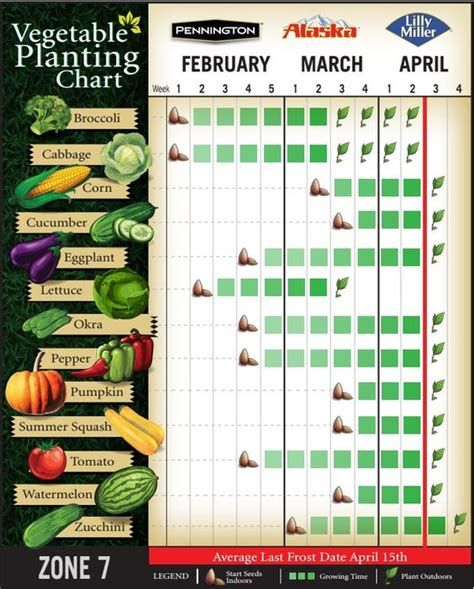 when to plant vegetable garden the world s catalog of ideas