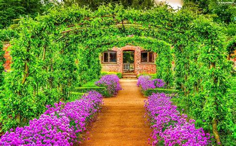 green garden flowers tunnel green garden flowers for desktop wallpapers