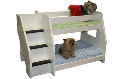 puppy bunk beds bunk beds for blind dogs i would want customer