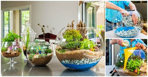 ideas for to make creative ideas how to make a terrarium i creative ideas