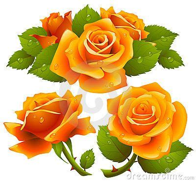 orange roses set flower tattoo ideas pinterest