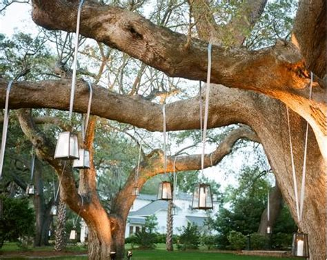 decorations for outdoor trees decorations for outdoor trees weddingbee