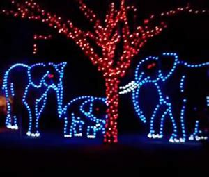zoo lights miami top lights shows in south florida 171 cbs miami