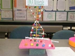dna craft project 32 best images about dna on models lego and