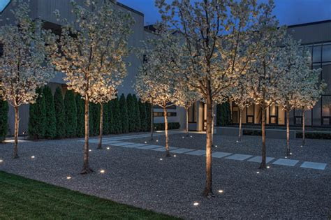 landscape lighting uplight trees 17 inspiring exles of exterior uplighting on houses contemporist