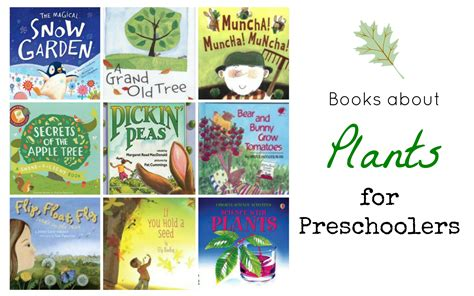 picture books preschool books about plants for preschoolers