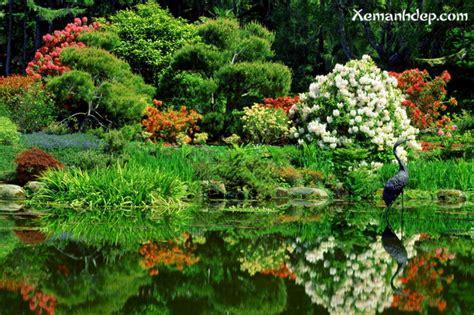 beautiful flower garden photos beautiful flower gardens photos garden picturess
