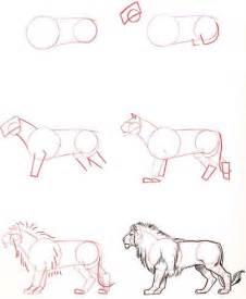 drawing tutorials a lot of animal drawing tutorial drawing